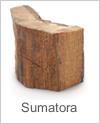 sumatora